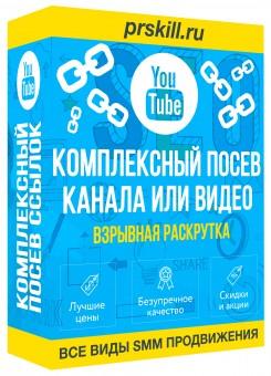 Раскрутка видео на Ютубе. Раскрутка ютуб канала за деньги. Вывод видео в ТОП. Раскрутка видео ютуб.